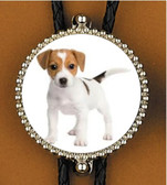 Jack Russell Terrier Bolo Tie