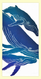 """SKU#HHumpback Hand screen printed by Hawaii artist Janet Holaday on Oahu, Hawaii. This beautifully colored pod of Hawaiian Humpback Whales towel is printed on 100% woven cotton using environmentally friendly inks. Measures 18"""" x 30."""" Makes a great addition to any kitchen!"""