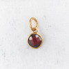 JW00206 Birthstone Garnet - Dark Red - Charm Pendant - Wildflower.Co - Main