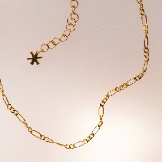 Figaro Anklet - Gold - Wildflower + Co. Jewelry (1)