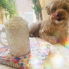 Unicorn Mug - Make Magic - Magic Maker - Cute Funny Mug - White Iridescent - XL Large Oversize - Wildflower + Cup (1)