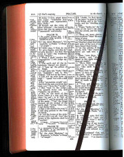 Two Version Bible (AV and RV in margin)