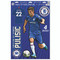 Chelsea FC Christian Pulisic Decal Set of 4
