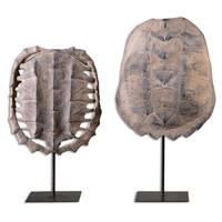 Turtle Shells, S/2