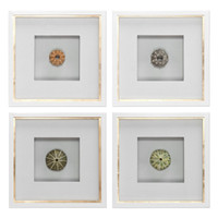 Sea Urchins Shadow Box Art, S/4