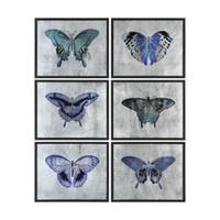 Vibrant Butterflies Prints S/6