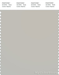 PANTONE SMART 14-4500X Color Swatch Card, Moonstruck