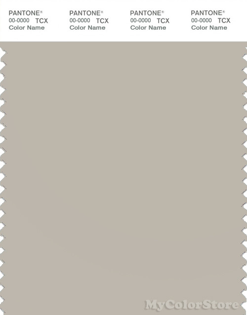PANTONE SMART 14-4501X Color Swatch Card, Silver Lining