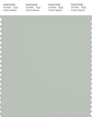 PANTONE SMART 14-4502X Color Swatch Card, Mercury