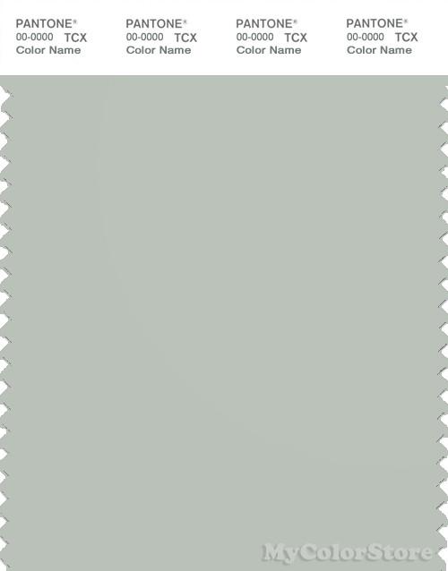 PANTONE SMART 14-4502X Color Swatch Card, Mercury