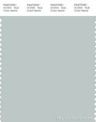 PANTONE SMART 14-4504X Color Swatch Card, Sky Gray