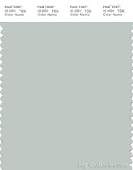 PANTONE SMART 14-4505X Color Swatch Card, Smoke