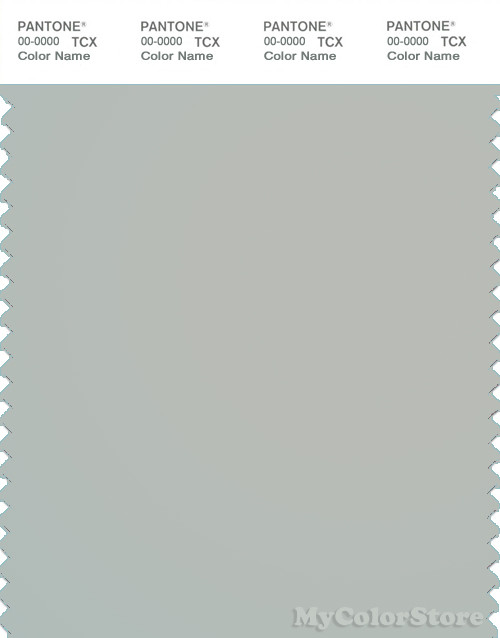 PANTONE SMART 14-4804X Color Swatch Card, Blue Fox