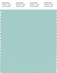 PANTONE SMART 14-4809X Color Swatch Card, Eggshell Blue