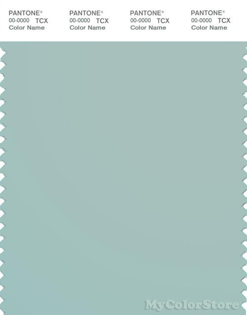 PANTONE SMART 14-4908X Color Swatch Card, Harbor Gray
