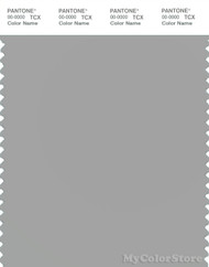 PANTONE SMART 14-5002X Color Swatch Card, Silver