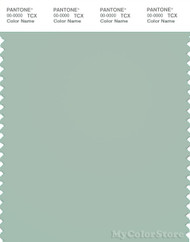 PANTONE SMART 14-5706X Color Swatch Card, Grayish Green