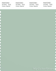 PANTONE SMART 14-5707X Color Swatch Card, Aqua Foam