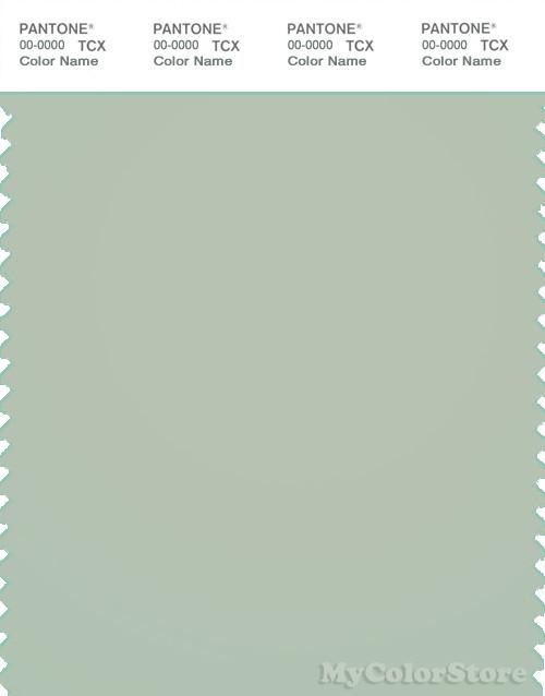 PANTONE SMART 14-6007X Color Swatch Card, Sea Foam