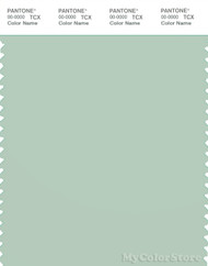 PANTONE SMART 14-6008X Color Swatch Card, Subtle Green