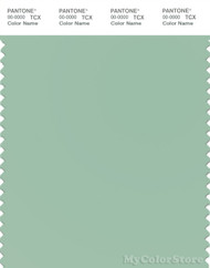 PANTONE SMART 14-6011X Color Swatch Card, Jade Gray