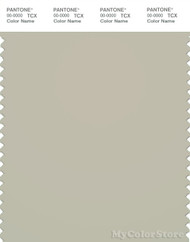 PANTONE SMART 14-6305X Color Swatch Card, Pelican