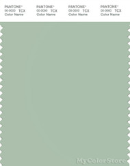 PANTONE SMART 14-6312X Color Swatch Card, Cameo Green