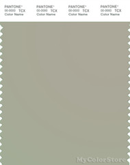 PANTONE SMART 14-6408X Color Swatch Card, Abbey Stone