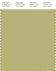 PANTONE SMART 15-0628X Color Swatch Card, Leek Green