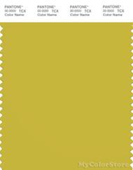 PANTONE SMART 15-0646X Color Swatch Card, Warm Olive