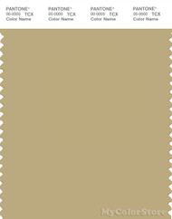 PANTONE SMART 15-0719X Color Swatch Card, Silver Fern