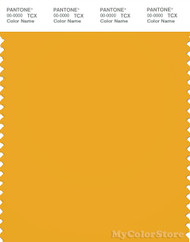 PANTONE SMART 15-0955X Color Swatch Card, Old Gold