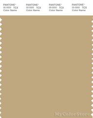 PANTONE SMART 15-1119X Color Swatch Card, Drab Gray