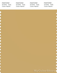 PANTONE SMART 15-1132X Color Swatch Card, Fall Leaf
