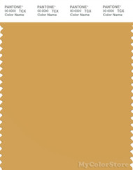 PANTONE SMART 15-1142X Color Swatch Card, Honey Gold
