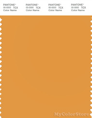 PANTONE SMART 15-1147X Color Swatch Card, Butterscotch