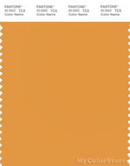 PANTONE SMART 15-1147X Color Swatch Card, Butterscotch