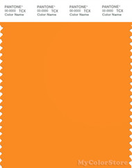 PANTONE SMART 15-1157X Color Swatch Card, Flame Orange