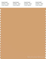 PANTONE SMART 15-1231X Color Swatch Card, Clay