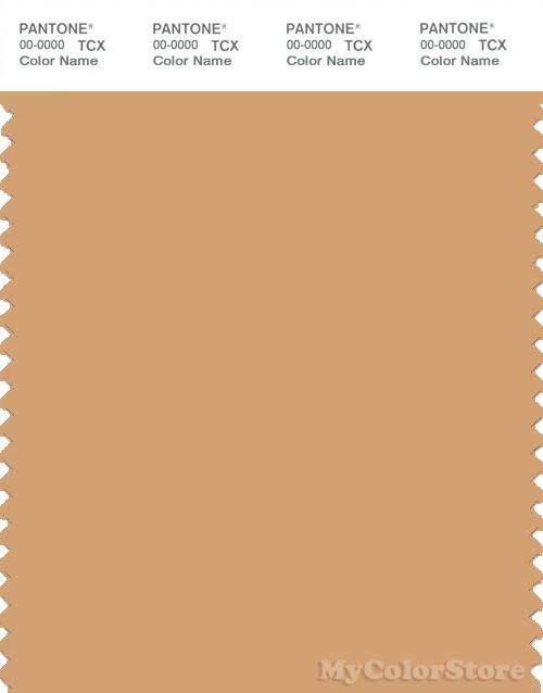 PANTONE SMART 15-1231X Color Swatch Card, Clay