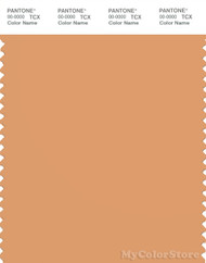 PANTONE SMART 15-1234X Color Swatch Card, Gold Earth