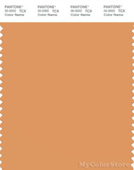 PANTONE SMART 15-1237X Color Swatch Card, Apricot Tan