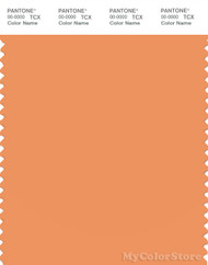 PANTONE SMART 15-1242X Color Swatch Card, Muskmelon