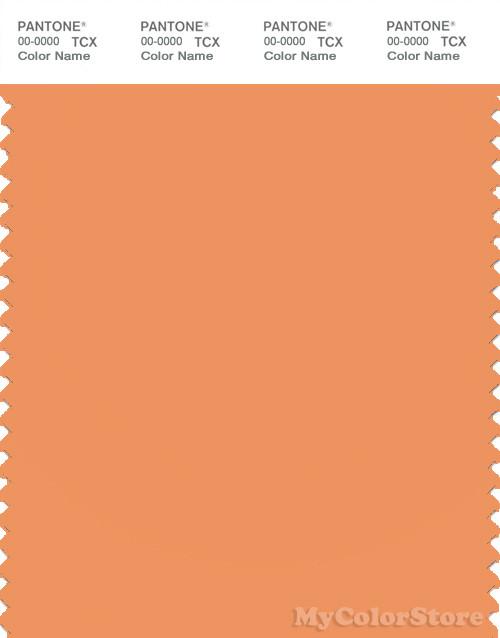PANTONE SMART 15-1242X Color Swatch Card, Muskmelon