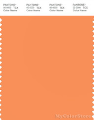 PANTONE SMART 15-1247X Color Swatch Card, Tangerine
