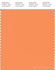 PANTONE SMART 15-1247X Color Swatch Card, Tangerine