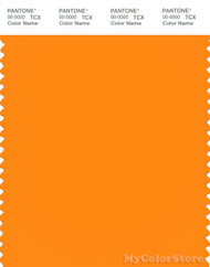 PANTONE SMART 15-1263X Color Swatch Card, Autumn Glory