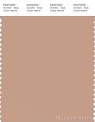 PANTONE SMART 15-1317X Color Swatch Card, Sirocco