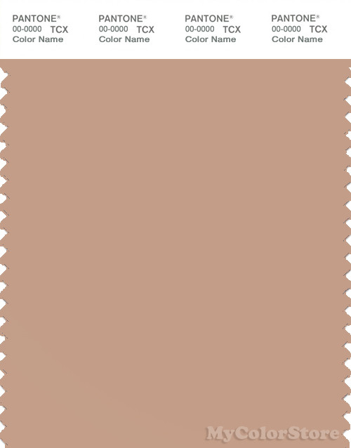 PANTONE SMART 15-1317X Color Swatch Card, Sirocco