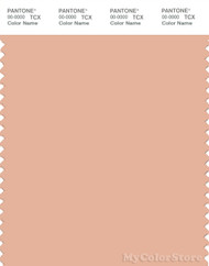 PANTONE SMART 15-1319X Color Swatch Card, Almost Apricot